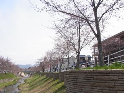 201143_006