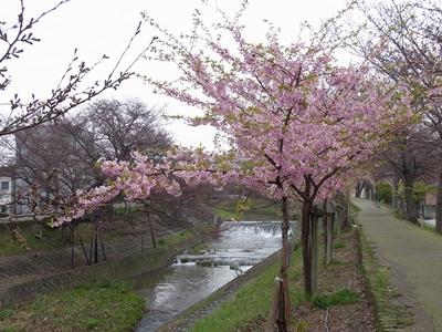 2012_04_03_15