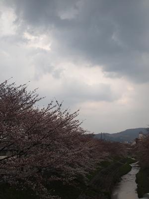 2012_04_05_120_2