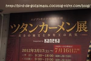 2012_05_28_5